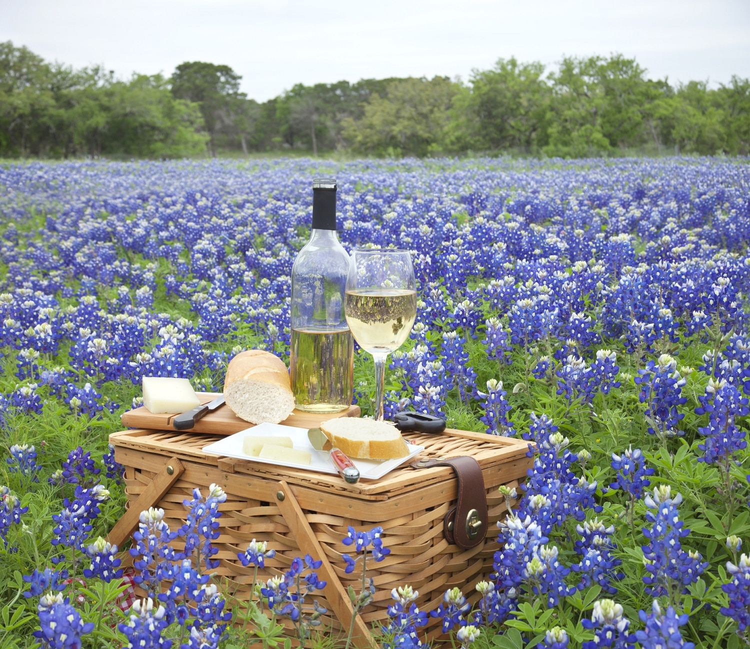 here is your guide to the texas wine country blair house inn